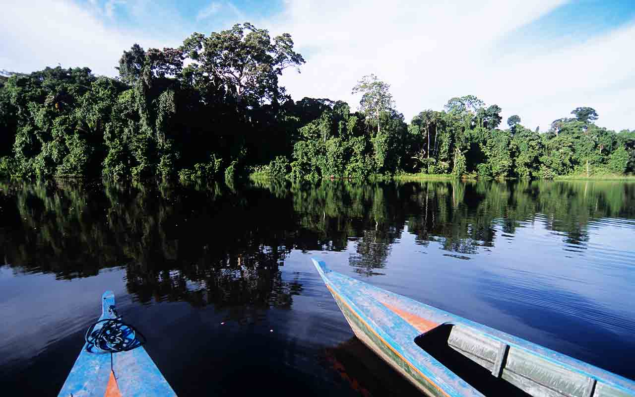 Pacaya Samiria - Trip Peru